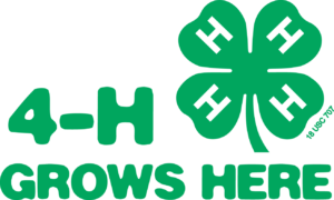 Cover photo for Clovers All Over:  What Are the 4 H's Anyway?