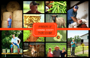 Cover photo for Farmers of Catawba County