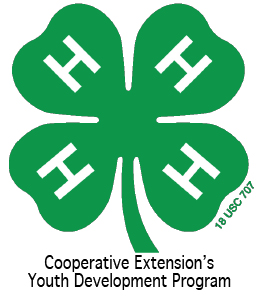 Cover photo for New 4-H Clubs Starting in February
