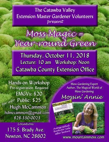 Moss Magic flyer image