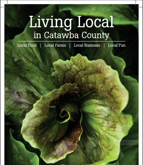 Lettuce on the cover of local food guide