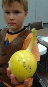 boy holding a gourd