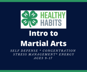 Cover photo for Intro to Martial Arts for Summer