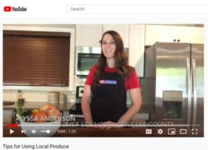 Alyssa Anderson gives cooking lessons through Youtube Videos.