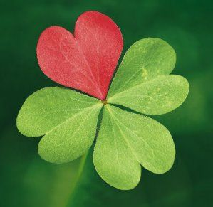 Cover photo for Four Leaf Clovers and Sweethearts!